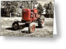 Life On The Farm Greeting Card by Susan Kinney