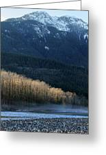 Light In The Trees In Squamish Greeting Card by Pierre Leclerc Photography