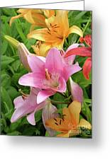 Lilies (lilium Sp.) Greeting Card by Tony Craddock
