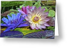 Lilies No. 30 Greeting Card by Anne Klar