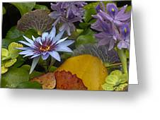 Lilies No. 37 Greeting Card by Anne Klar
