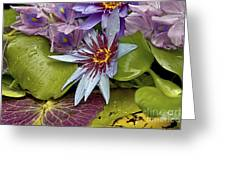 Lillies No. 9 Greeting Card by Anne Klar