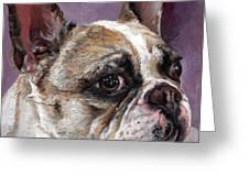 Lilly The French Bulldog Greeting Card by Enzie Shahmiri