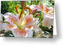 Lily Flowers Floral Prints Photography Orange Lilies Greeting Card by Baslee Troutman