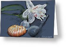 Lily Nautilus And Glass  Greeting Card by Rosy Hall