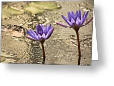Lily Twins Greeting Card by Carolyn Marshall