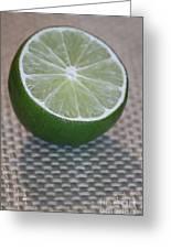 Lime Light Greeting Card by Terri Thompson