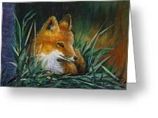 Little Kit Greeting Card by Dee Carpenter
