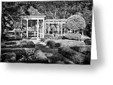 Little Park In Philadelphia 2 Greeting Card by Val Black Russian Tourchin