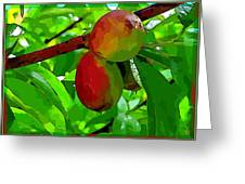 Little Peaches Greeting Card by Mindy Newman