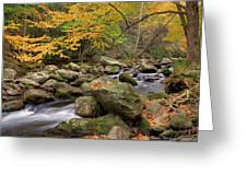 Little River I Greeting Card by Charles Warren