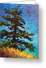 Lone Pine II Greeting Card by Marion Rose