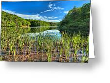 Long Branch Lake Marsh Greeting Card by Adam Jewell