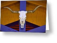 Longhorn Greeting Card by Carol Leigh