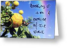 Look Up Greeting Card by Shaboo Prints