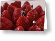 Looking For A Strawberry Hill Thrill Greeting Card by David Bearden