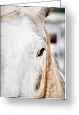 Looking Into Her Soul Greeting Card by Darren Fisher