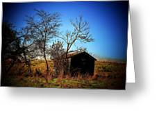 Lost Shed Greeting Card by Joyce Kimble Smith