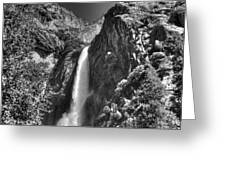 Lower Yosemite Falls Bw Greeting Card by Bruce Friedman