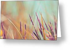 Luminis - S07b Greeting Card by Variance Collections