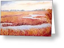 Lynne's Marsh Greeting Card by Patricia Huff