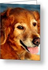 Maggies Smile Greeting Card by Karen Wiles