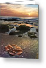 Magic Every Moment Greeting Card by Debra and Dave Vanderlaan