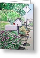 Mail Boxes Sketchbook Project Down My Street Greeting Card by Irina Sztukowski