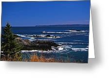 Maine At West Quoddy Greeting Card by Skip Willits
