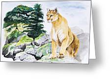 Majestic Domain Greeting Card by Joette Snyder