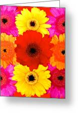 Make My Day I Greeting Card by Artecco Fine Art Photography