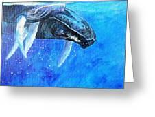 Mama And Baby Whale Greeting Card by Tamara Tavernier
