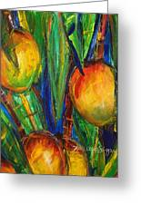Mango Tree Greeting Card by Julie Kerns Schaper - Printscapes