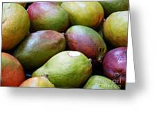 Mangoes Greeting Card by Methune Hively