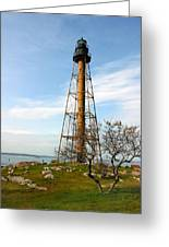 Marblehead Light Greeting Card by Michelle Wiarda