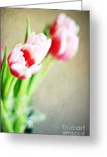March Tulips Greeting Card by Darren Fisher