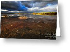 Marsh Landscape Of Cabo Rojo Greeting Card by George Oze