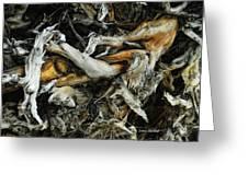 Mass Grave Greeting Card by Donna Blackhall