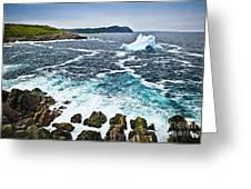 Melting Iceberg In Newfoundland Greeting Card by Elena Elisseeva