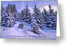 Merry Christmas And A Wonderful New Year Greeting Card by Sabine Jacobs