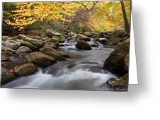 Mid Stream Greeting Card by Charles Warren