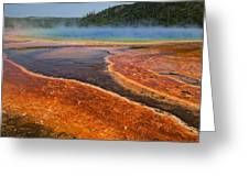 Middle Hot Springs Yellowstone Greeting Card by Garry Gay