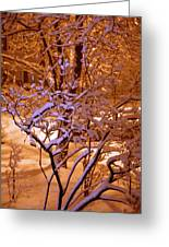 Midnight Snow Greeting Card by Ellen Andrews