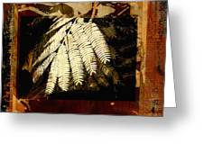 Mimosa Leaf Collage Greeting Card by Ann Powell