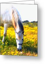Mirage Greeting Card by Stelios Kleanthous