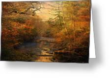 Misty Autumn Morning Greeting Card by Jai Johnson