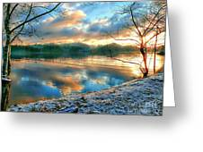 Misty Morning Greeting Card by Gail Bridger