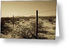 Mojave Wilderness Greeting Card by Gilbert Artiaga