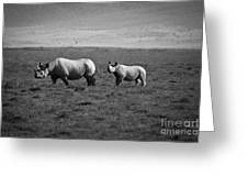 Mom And Child Black Rhinos Greeting Card by Darcy Michaelchuk