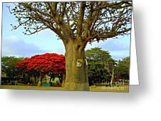 Moments And Tree Greeting Card by Fania Simon